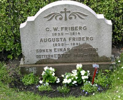 Sommarblommor på gamla graven. Jag skulle självklart fotat innan jag vattnade och blommorna lade sig ner.