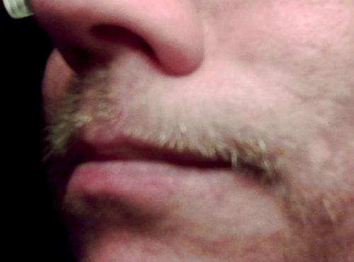 Mina små svinborts till mustasch